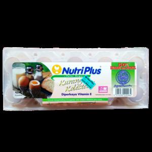 NUTRIPLUS LOW CHOLESTEROL EGGS 1X10S